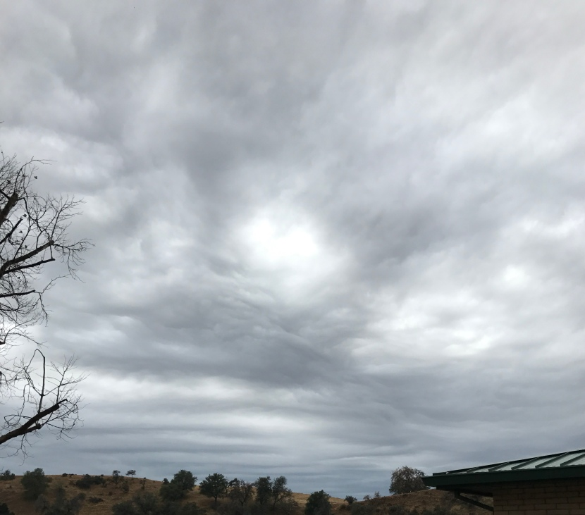 On waking up anxious – Gratitude5/3